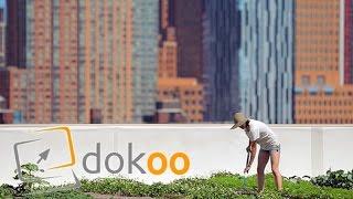 Auf den Dächern der Stadt -  New York | Doku