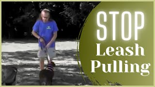 No More Pulling Dog Fixed In 5 Minutes - Solid K9 Training