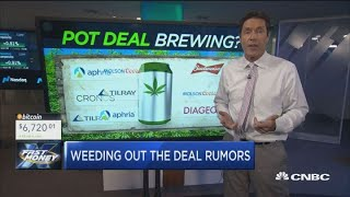 the next big deal in the cannabis space