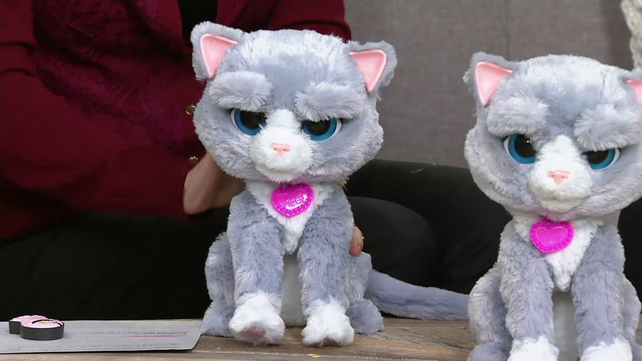Furreal Friends Bootsie The Cat By Hasbro On Qvc Youtube