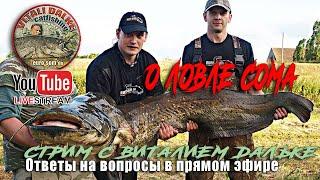 Рыбалка на сома ответы на ваши вопросы Виталий Дальке в прямом эфире