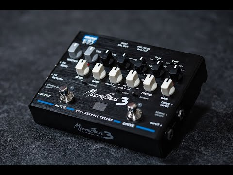 EBS MicroBass 3 - Dual Channel Preamp - Bass Guitar Review