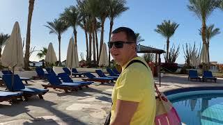 Первыи день в отеле SIVA SHARM Resort кот пои мал краба АРИНА БЕЛАЯ
