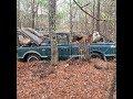 1967 Short Wide Bed Chevrolet Pickup Barn Find