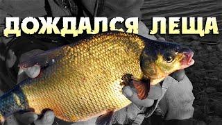 Рыбалка на фидер / Ловля леща и карася