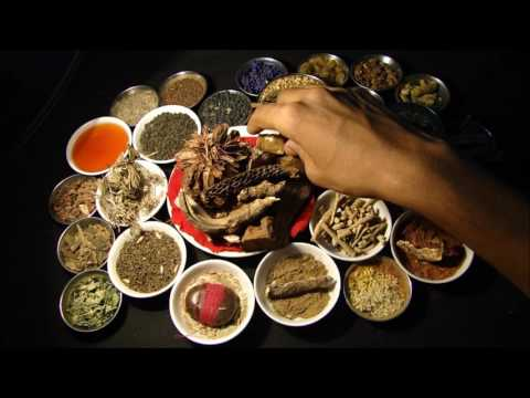 Stage 4 Breast Cancer: Traditional Herbal Drugs. Research by Pankaj Oudhia