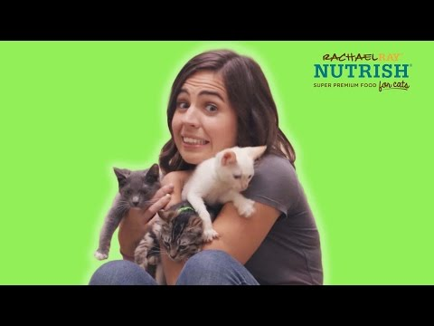 A Couple Rescues A Cat // Presented By BuzzFeed & Rachael Ray Nutrish