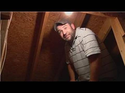 Pest Control How To Get Rid Of Wasps In The Attic Youtube