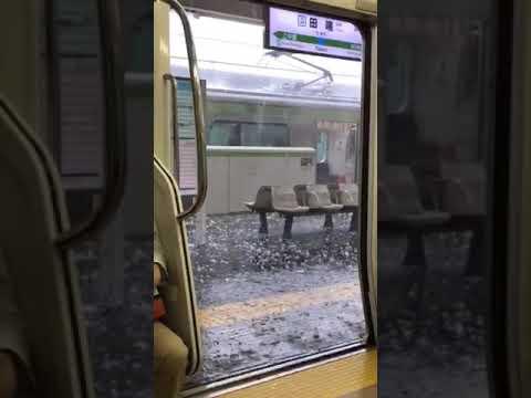 Freak hail storm hits Tokyo