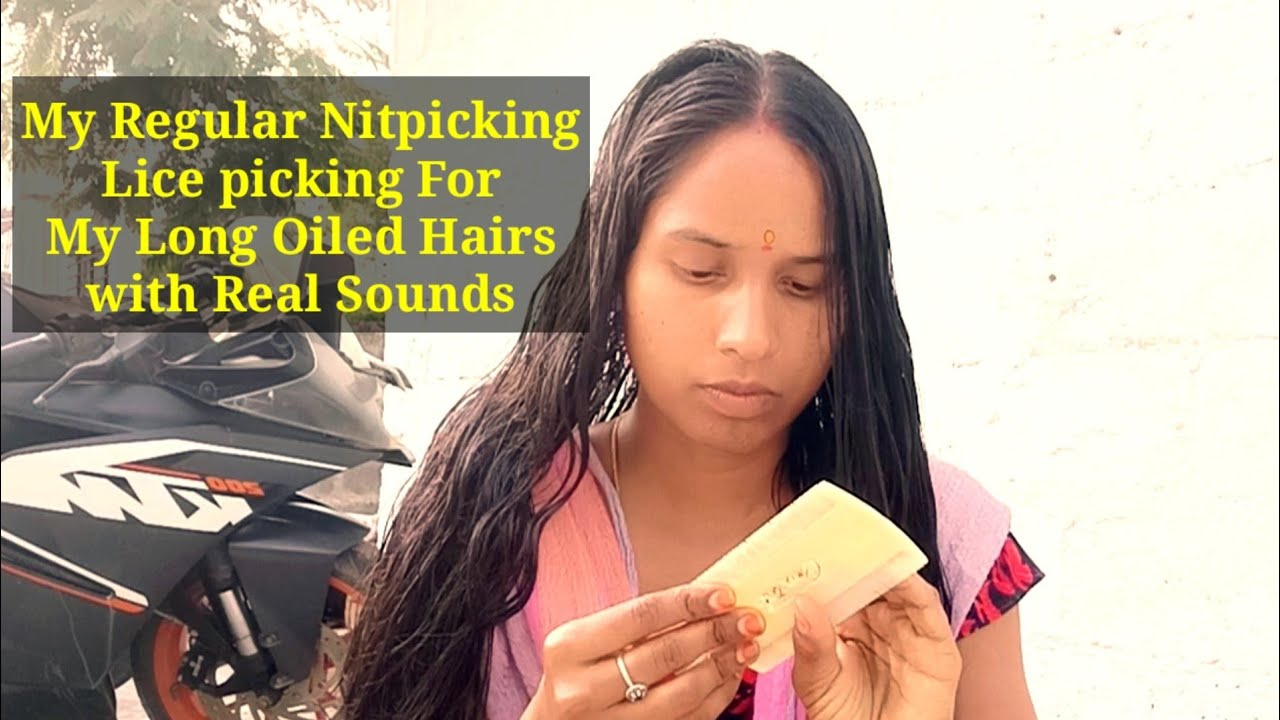 My Regular Nitpicking / Lice Picking For My Long Oiled Hairs with Real Sounds