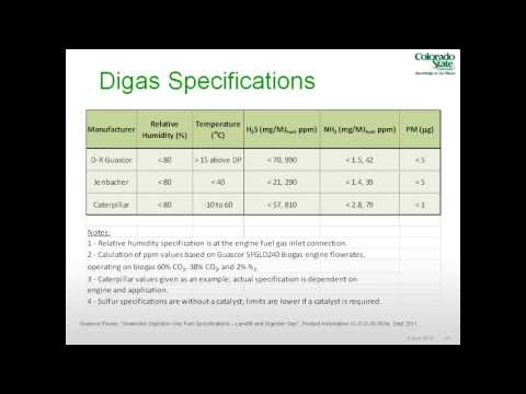 Operation of Internal Combustion Engines on Digas for Electricity Production