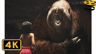 Знакомство с Орангутангом Луи | Книга джунглей (2016) HD