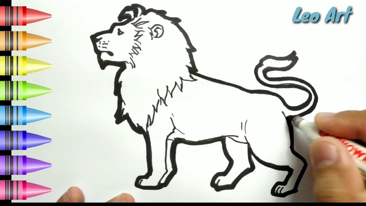 HEBAT Cara Menggambar Dan Mewarnai Singa Dengan Mudah Untuk Anak Indonesia