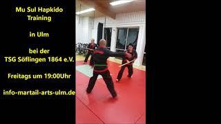 Mu Sul Hapkido-Training Martial-Arts-Ulm Okt 17