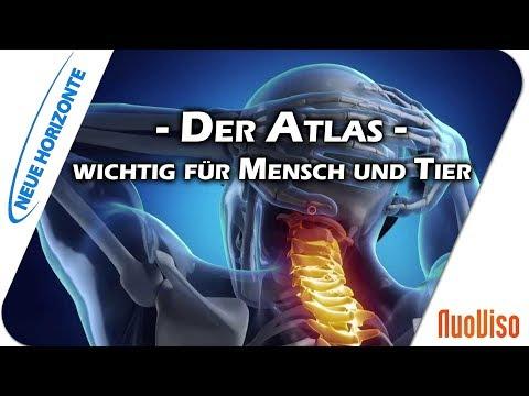 Der Atlas - wichtig für Mensch und Tier - Elisabeth Westermann