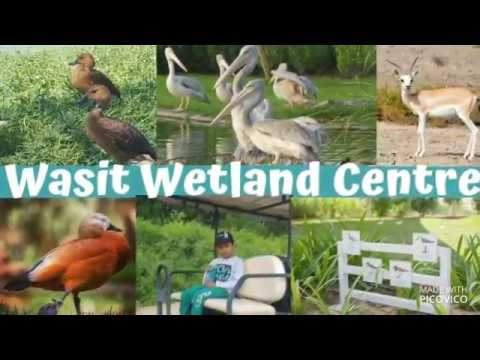 Wasit Wetland Centre In Sharjah, UAE –  Aga Khan Award for Architecture 2019 Honoured