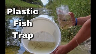 Plastic Bottle Fish Trap Catches Fish in a Crystal Clear Creek!