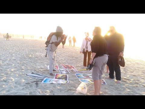 South Camps Bay Beach, Cape Town, Western Cape, South Africa Tour