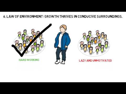 THE 15 INVALUABLE LAWS OF GROWTH BOOK BY JOHN C MAXWELL - ANIMATED BOOK REVIEW