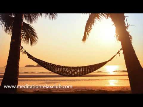Meditation Oasis: Sleep Meditation Music and Ultimate Relax Club
