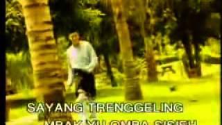 Haslina Kamsan - Putri Ledang (Lagu Jawa).flv