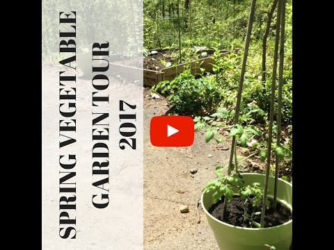Spring Garden Tour 2017 | Hardiness Zone 6a | CT| Organic gardening| Gardening from Seed