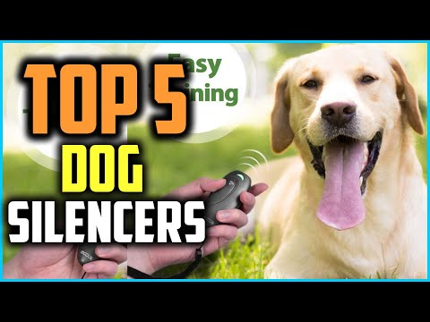 Top 5 Best Dog Silencers To Help Train Your Canine Review In 2020