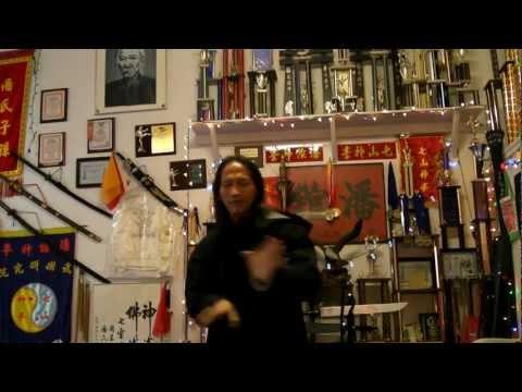 Thất Sơn Thần Quyền/ Thất Sơn Quyền of Thanvodao/ Seven-Mountains Spirit Fist Kung Fu