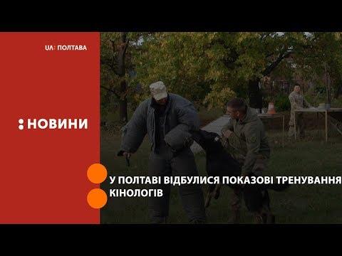 UA: Полтава: У Полтаві відбулися показові тренування кінологів