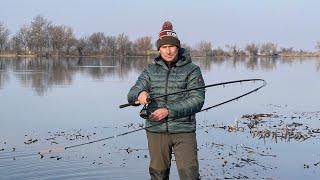 Разрыв плотвы на фидер РОЗЫГРЫШ 2 фидерных удилищ от ZEMEX Река Днестр