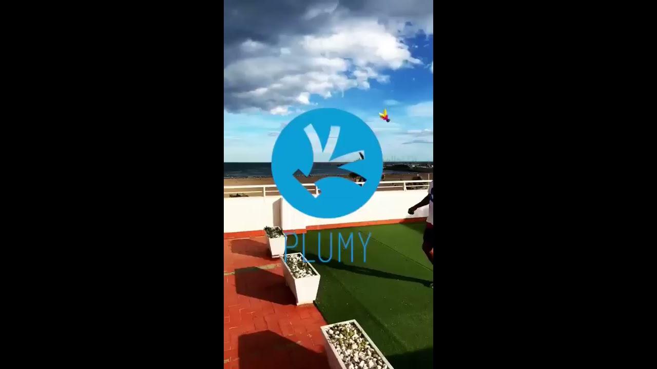 Plumy - Sous le ciel de Valence ;-)