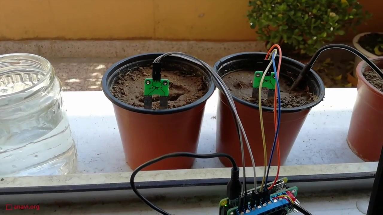 Experimenting with ANAVI Soil Moisture Sensor on Raspberry Pi