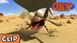 Watch Oscar's Oasis - Winning Ticket | HQ | Funny Cartoons on KidsLaugh