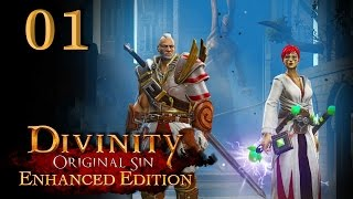 Divinity: Original Sin #01 - Wir sind Quellenjäger [Gameplay German Deutsch] [Let
