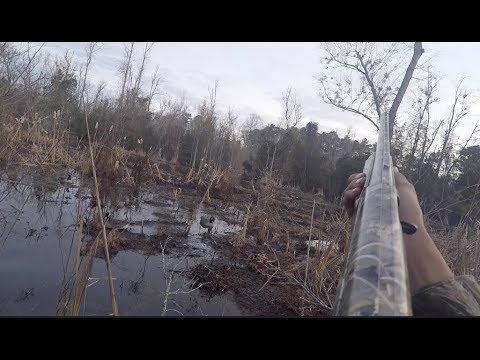 Duck Hunting 1/26/18 (Mallards!!)