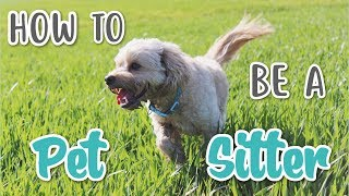 HOW TO BE A PET SITTER