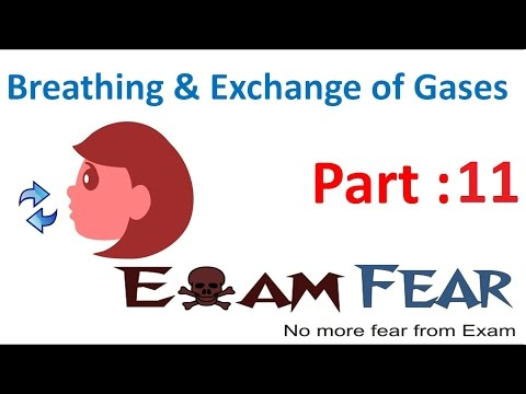Biology Breathing & Exchange of Gases part 11 (Exchange of gases, Mechanism) CBSE class 11 XI