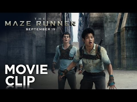 "The Maze Runner | ""Runners"" Clip [HD] 