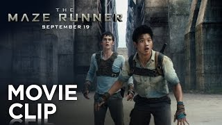 The Maze Runner |