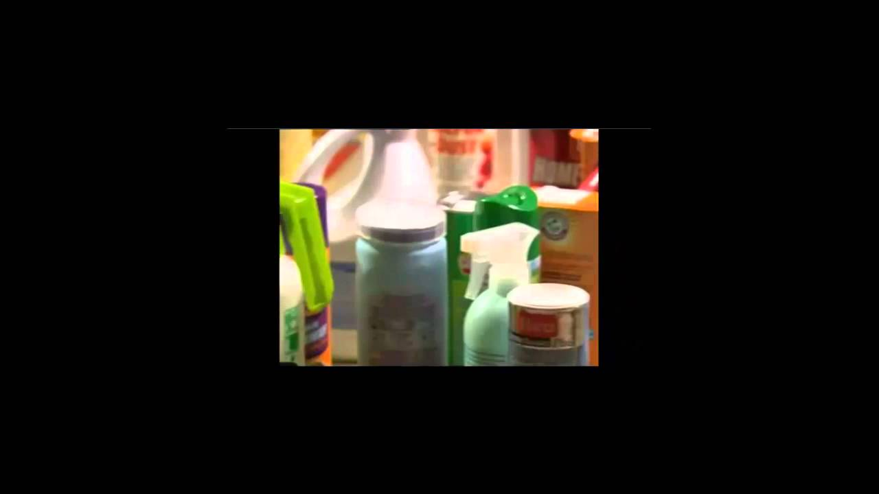 buy fabriclear bed bug spray as seen on tv - get rid of bed bugs