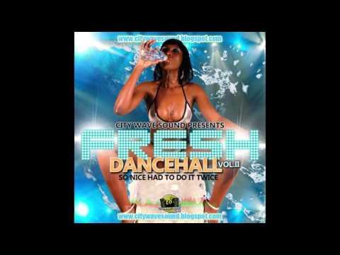 CityWave Sound - Fresh Dancehall Vol. 2_So Nice Had To Do It Twice (Mixtape 2010)