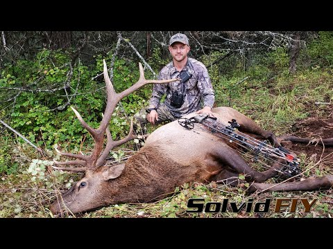 The Stare Down – OR Archery Elk Hunting – Solvid Film It Yourself