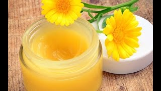 Calendula Part 2 How to make Healing Salves, Lotions, and lip balms