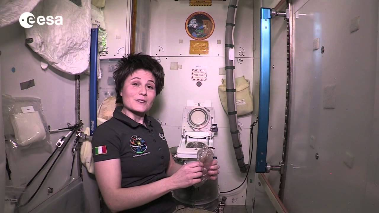 astronauts pee toilet - photo #11