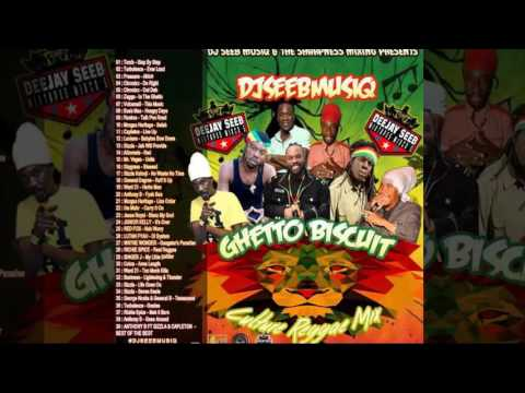 DJ Seeb - Ghetto Biscuit (Reggae Mixtape 2016 Long Preview)