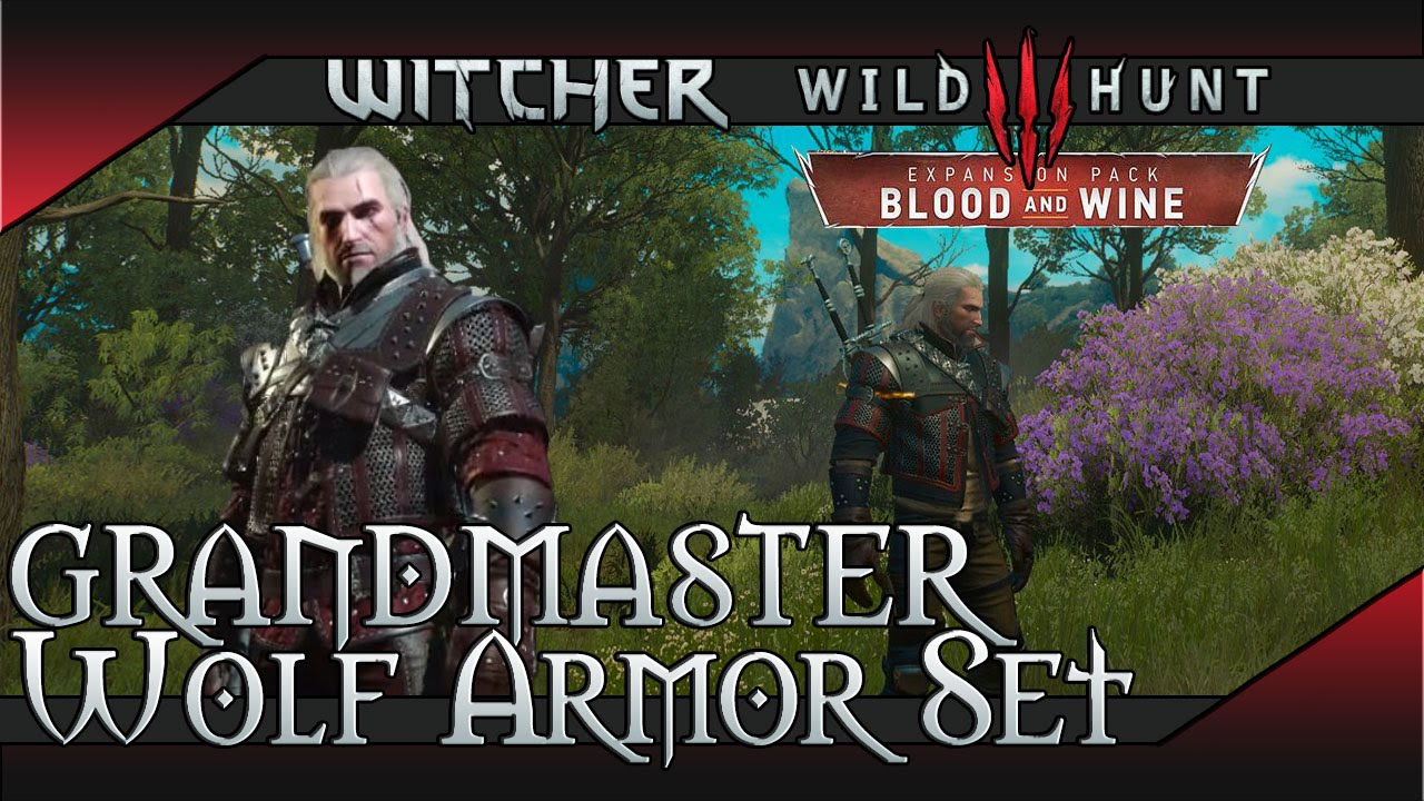 witcher 3 how to get money for grandmaster