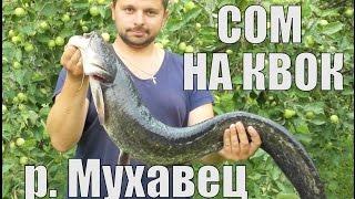СОМ НА КВОК. р. Мухавец.
