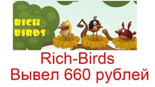RICH BIRDS - ЧТО БУДЕТ, ЕСЛИ ЗАКИНУТЬ 1000Р?