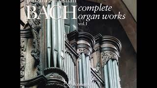 J. S. Bach - Complete Organ Works played on Silbermann Organs - CD 01/19