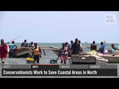 VICE News Daily  Saving Haiti's Northern Coastline